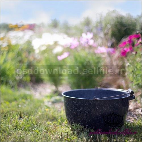 بک دراپ نوزاد سطل در باغ گل -کد 1017