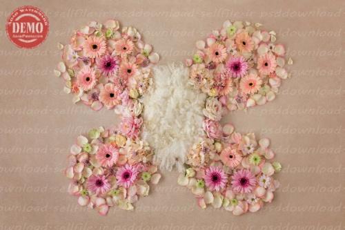 بک دراپ نوزاد پروانه گلدار -کد 6303
