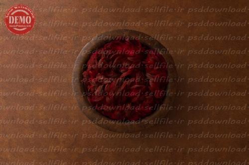 بک دراپ نوزاد پرهای قرمز-کد 6316