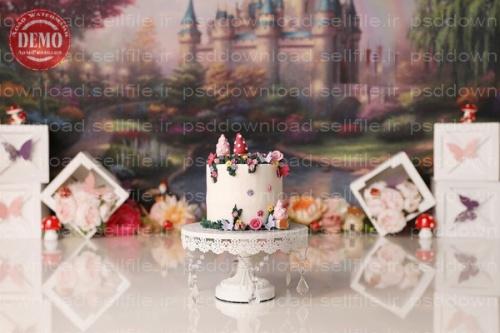 بک دراپ تولد تم قصر رویایی -کد 6411