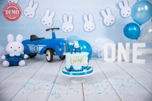 بک دراپ تولد تم خرگوش -کد 6414