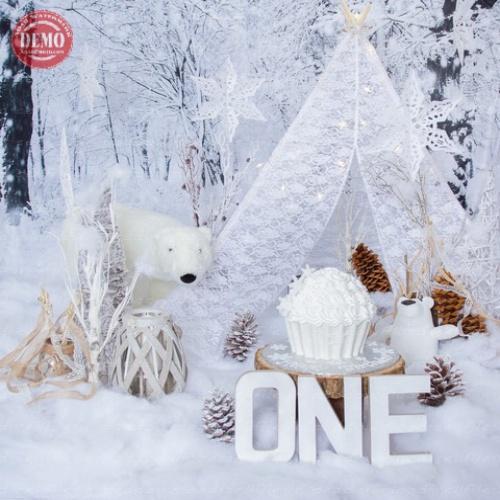بک دراپ تولد تم زمستان-کد 6476