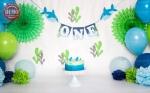 بک دراپ تولد تم کوسه -کد 6473
