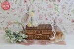 بک دراپ تولد تم خرگوش و چمدان -کد 6493