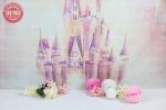 بک دراپ تواد تم قلعه رویایی -کد 6503