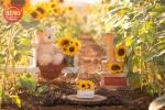 بک دراپ تولد تم باغ آفتابگردون-کد 6507