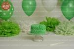 بک دراپ تولد تم سبز و سپید -کد 7423
